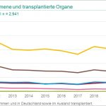Steuerberater Augsburg Grafik DSO Entnommene und transplantierte Organe